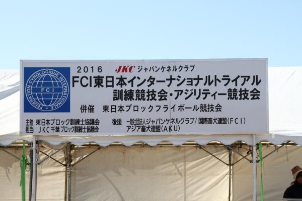 IMG_2754野田運動公園野田運動公園