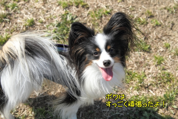 IMG_3135寒川寒川