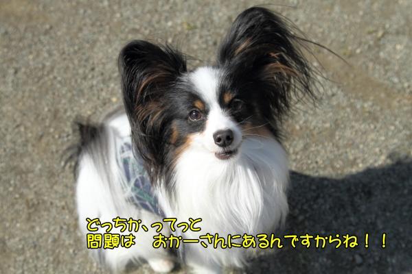 IMG_3138寒川寒川