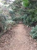 14_熊野ハイキング