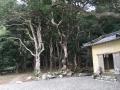 27_熊野ハイキング