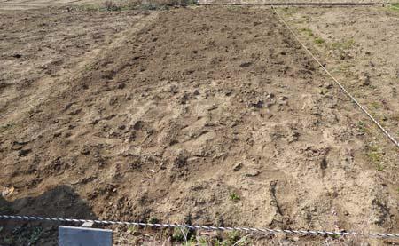 市民農園 区画