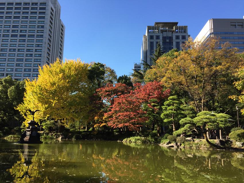 日比谷公園2015秋 (1)