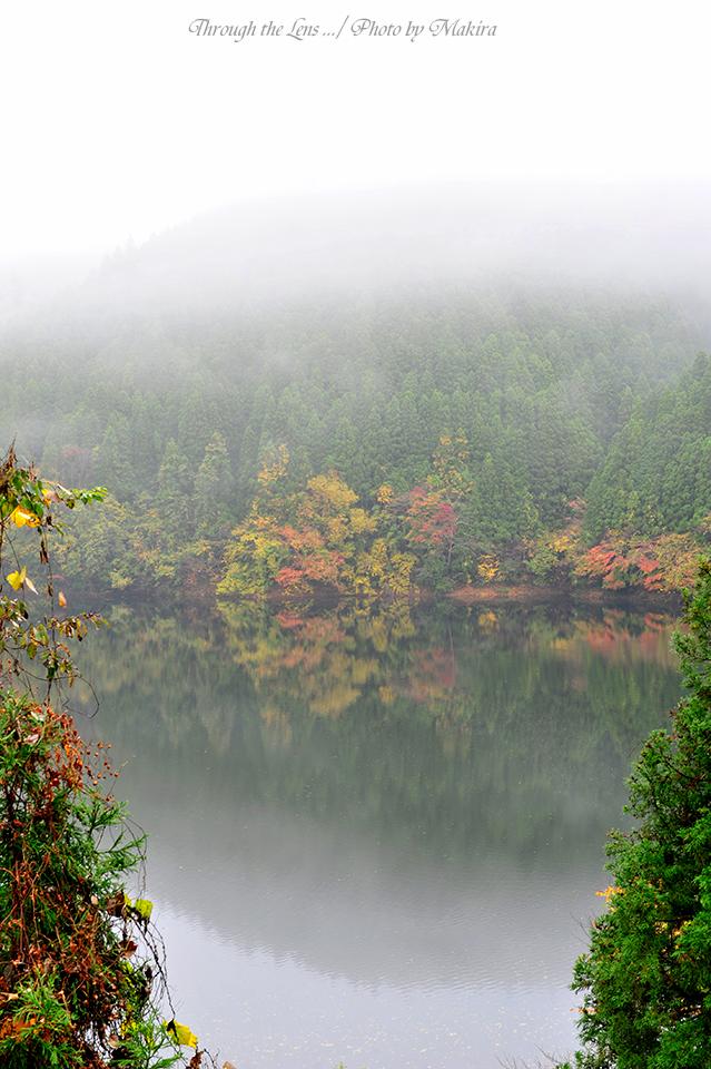 水沼ダム湖5