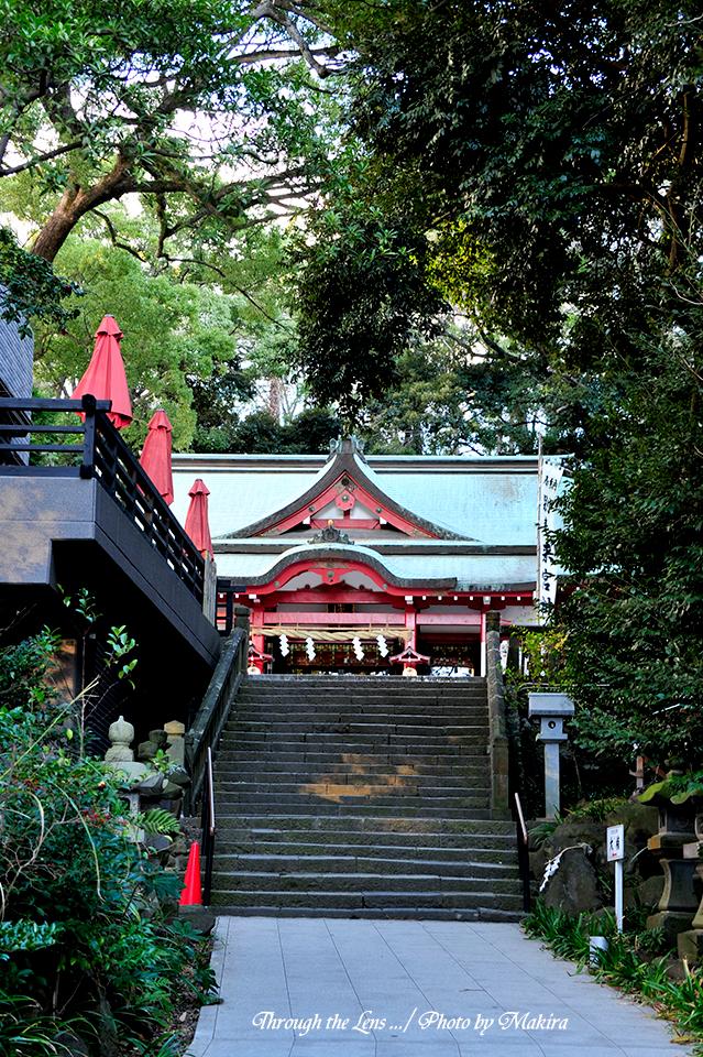 来宮神社6