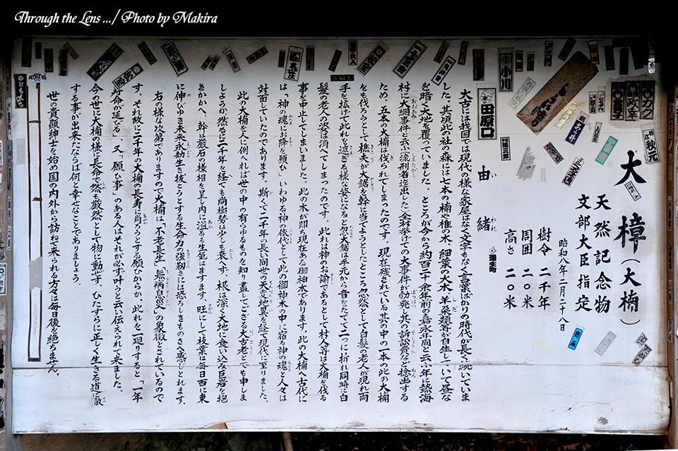来宮神社10