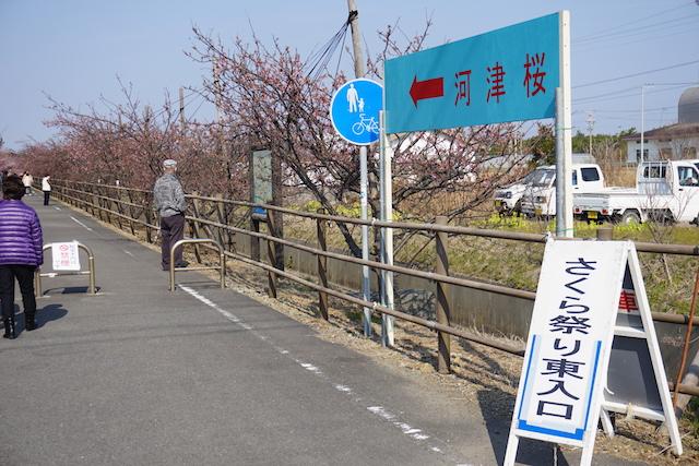 0227桜
