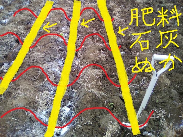 肥料その他を溝にぶち込む