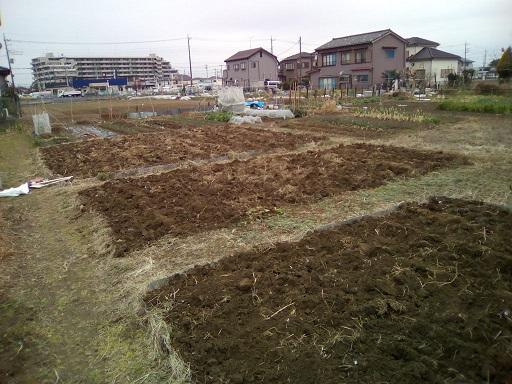 本日の耕作面積…全部