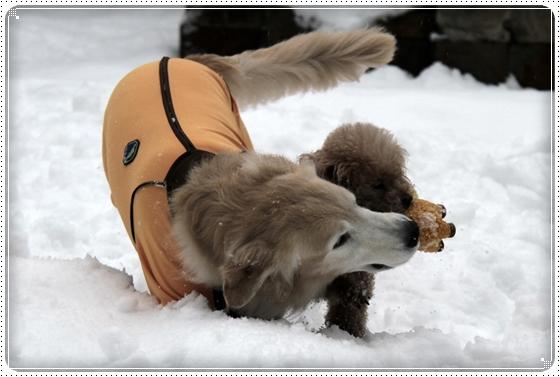 2016,2,18雪遊び3