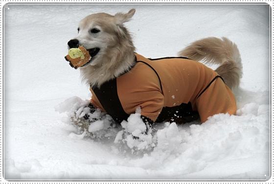 2016,2,18雪遊び1