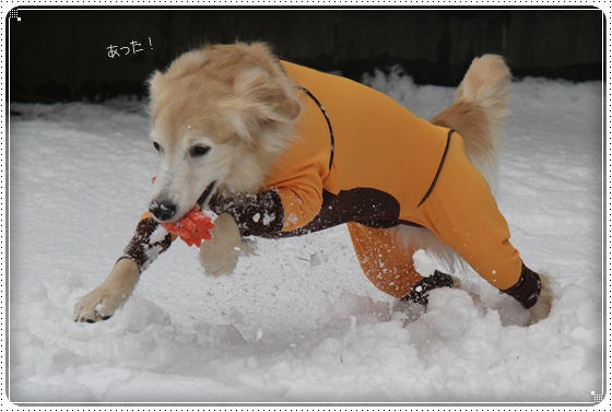 2016,2,26雪3