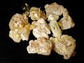 200px-Frankincense_2005-12-31.jpg