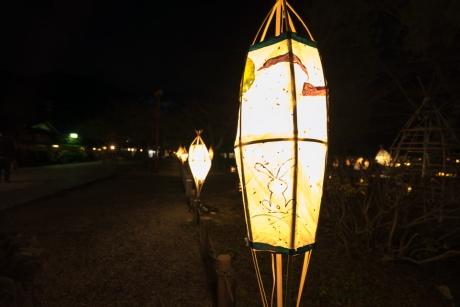 2015_arashiyama_hanatouro_18.jpg