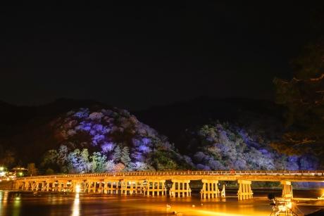 2015_arashiyama_hanatouro_21.jpg