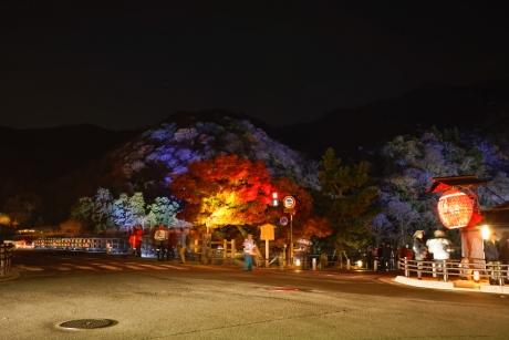 2015_arashiyama_hanatouro_26.jpg