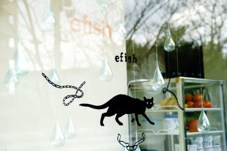 efish_3.jpg