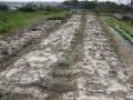 H27.10.30有機堆肥・石灰撒布(135.60k)@IMG_6863