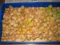 H27.12.2食用ホオズキ(オレンジチェリー)収穫②@IMG_7187