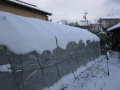 H28.1.20今季初積雪(H10㎝)@IMG_7539