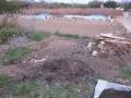H28.2.5堆肥枠取壊し後@IMG_7693
