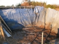 H28.2.8堆肥撤去@IMG_7732