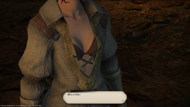 s_ffxiv_20151213_012202.png