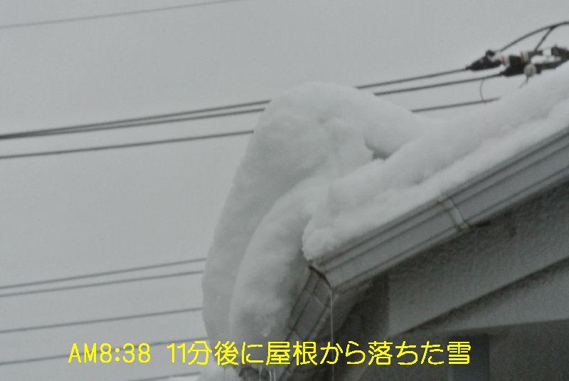 DSC_7089.jpg