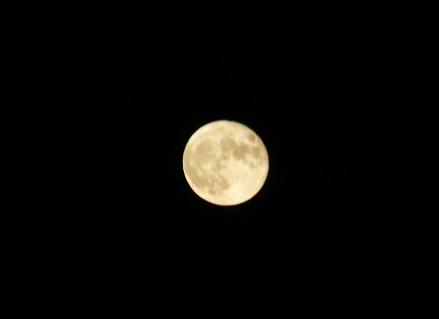 夕景と月4
