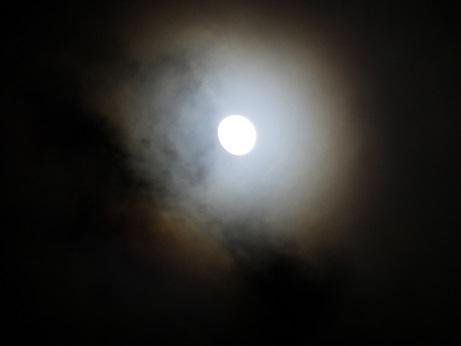 大寒の月1