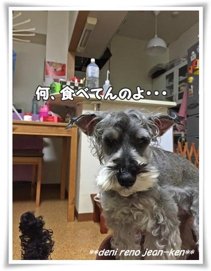 20160209_1b.jpg