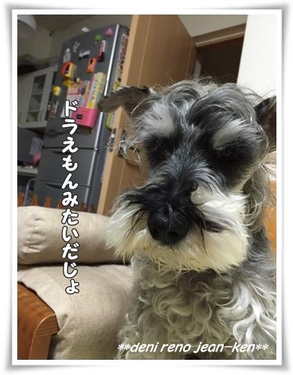 20160310_1d.jpg
