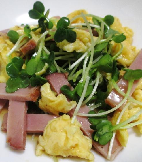 カイワレ炒り卵 大