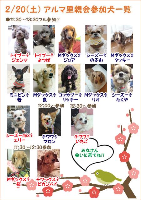 poster2_20160212115157b0e.jpg
