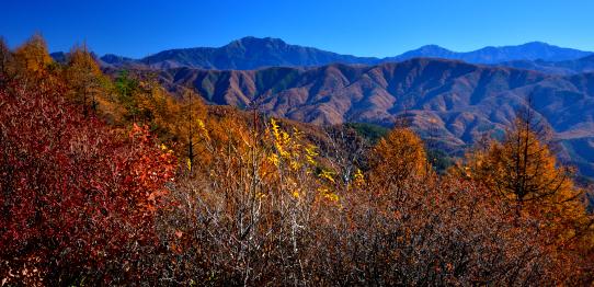 陣馬形山から望む仙丈ヶ岳・北岳・間ノ岳