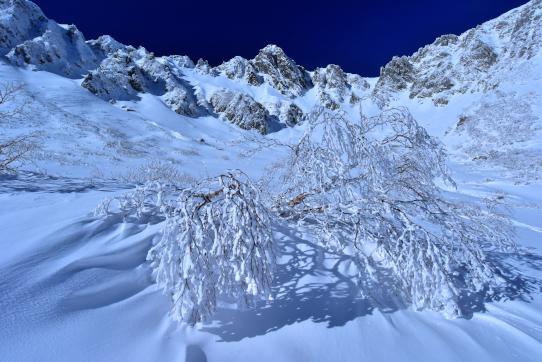 樹氷のダケカンバと宝剣岳