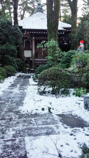 2016-01-17 大雪 ①