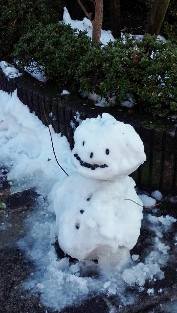 2016-01-17 大雪 ⑤