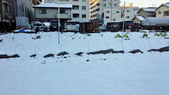 2016-01-17 大雪 ⑥