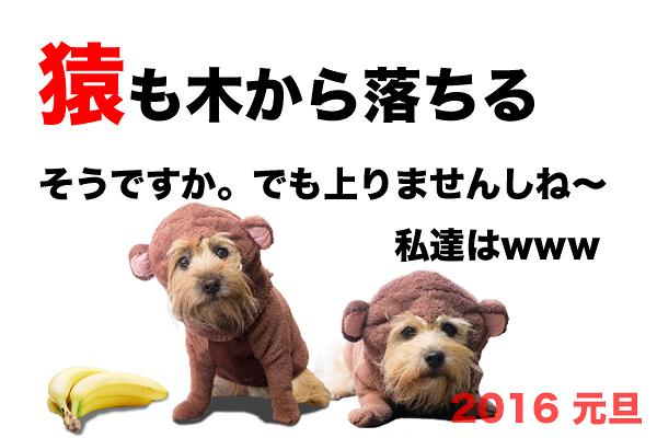 2016年賀_3 リサイズ