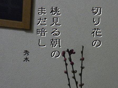 momo01.jpg