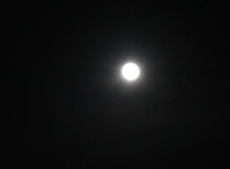 full moon102615 (1)