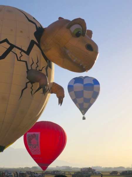 20 hotair balloon fiesta (112)