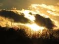 今年最後の太陽