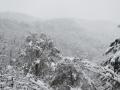 雪に煙る青葉山