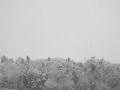 対岸の放山の雪