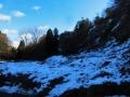 雪藪の巨大空間から色んな声が!