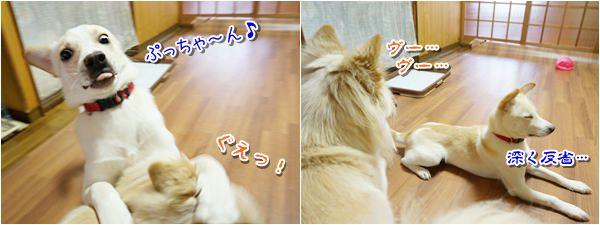 20160311_7.jpg