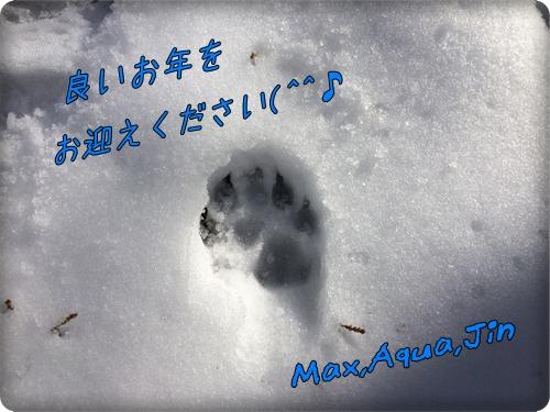20151224__IMG_3677.jpg