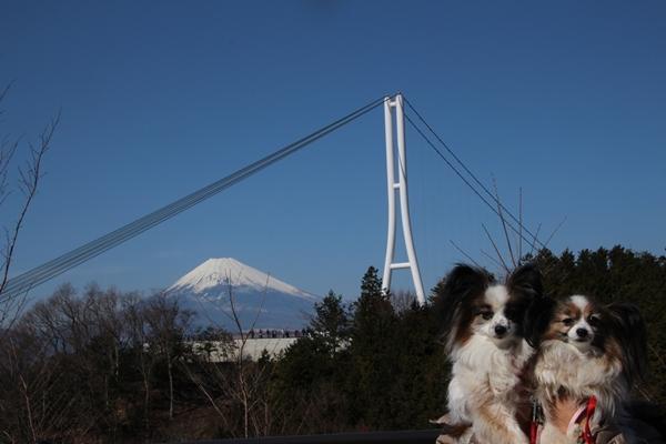 三島大橋2